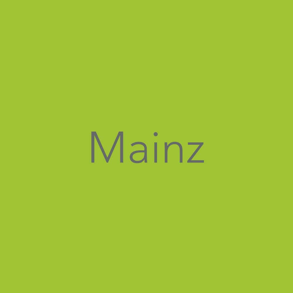 Balintgruppen Mainz