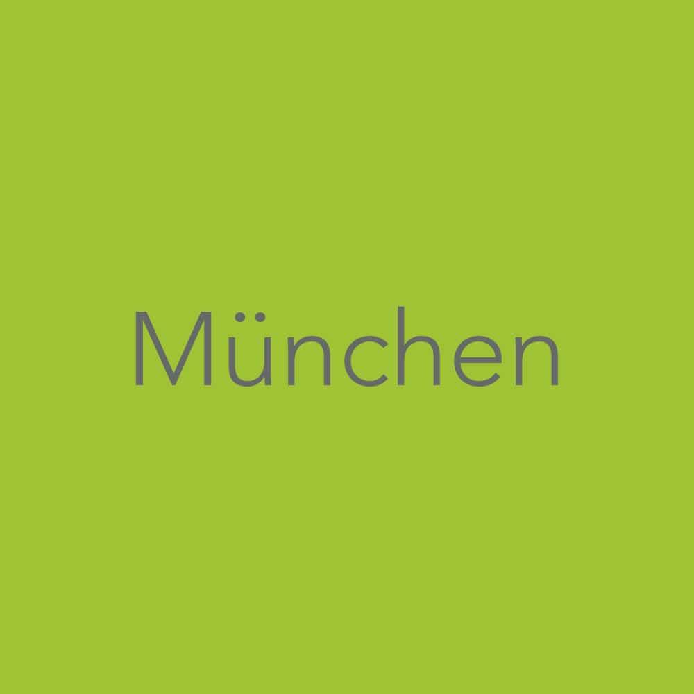 Balintgruppen München
