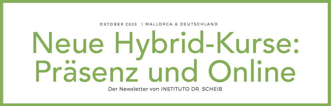 Newsetter Dr. Scheib, Hybrid Seminare Psychosomatische Grundversorgung, Online Seminare für Ärzte